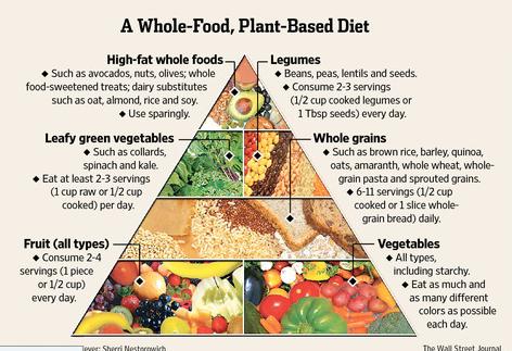 wfpb-food-pyramid.png
